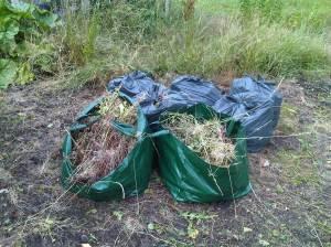 First few bin bags of weeds